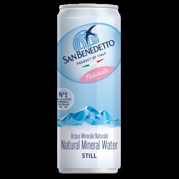 NATURALE SAN BENEDETTO LATTINA 0.33x24